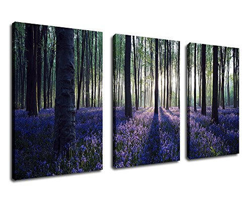 Canvas Wall Art Purple Lavender Forest Morning Sunshine Painting - 30