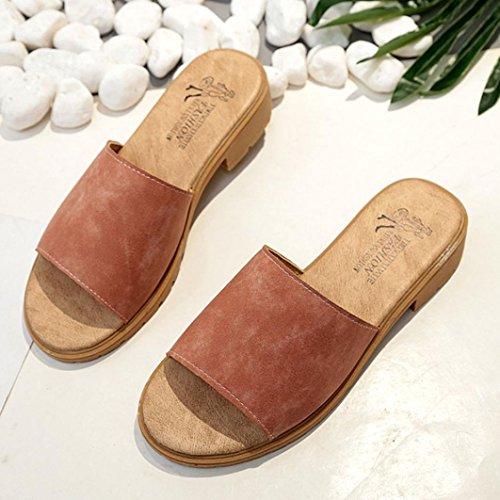 Rcool Damen Mode Sommer Style Plattform Hausschuhe Braun