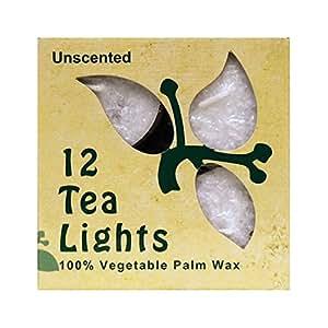 Aloha Bay, Palm Wax Candles, Tea Lights, Unscented, White, 12 Candles