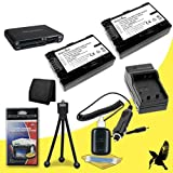Two Halcyon 1300 mAH Lithium Ion Replacement NP-FH50 Battery and Charger Kit + Memory Card Wallet + Multi Card USB Reader + Deluxe Starter Kit for Sony DCR-DVD205 1MP DVD Handycam Camcorder and NP-FH50