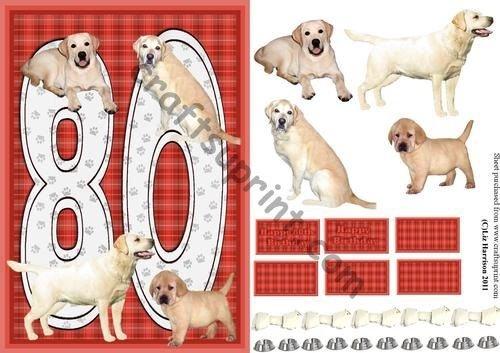 Golden Labrador 80th Birthday Card by Liz Harrison