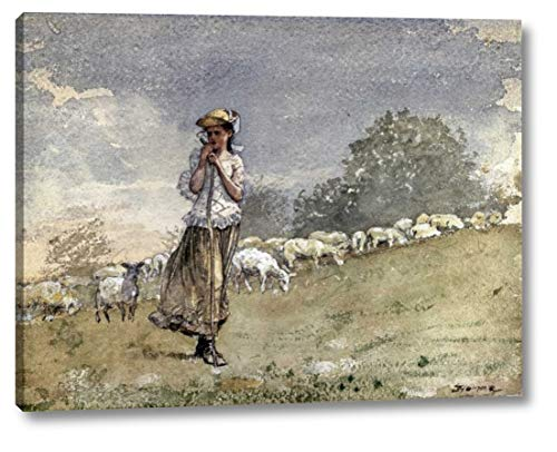 "Tending Sheep, Houghton Farm by Winslow Homer - 15"" x 19"" Gallery Wrapped Giclee Canvas Print - Ready to Hang"