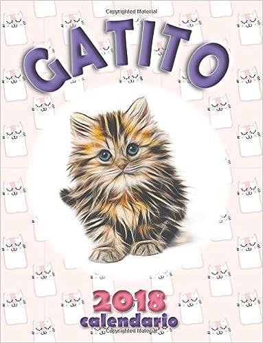 Gatito 2018 Calendario (Edición España): Amazon.es: Wall ...