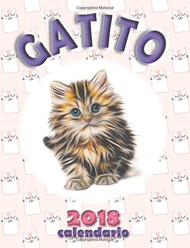 Gatito 2018 Calendario (Edición España): Amazon.es: Wall ...