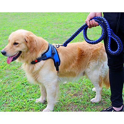 JRPets Dog Harness Leash 4 feet Two-Color Eight-Strand Rope Small Large Medium Dog Labrador, Golden Retriever,Shepherd Dog, Leash and Harness Combination (L, Blue and Black Combination)