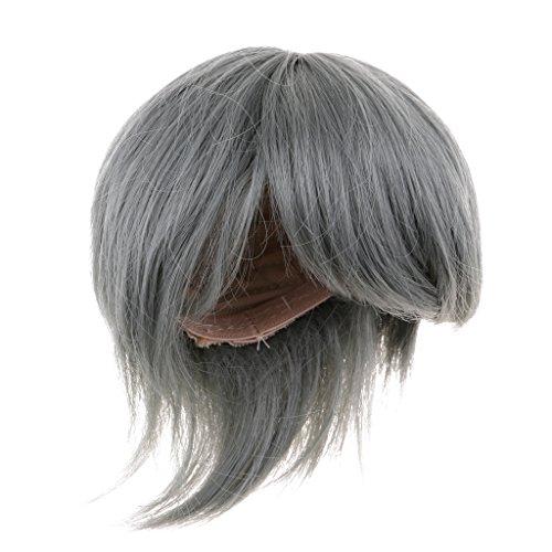 Wig Doll Antique (Prettyia 1/3 Gray Short Hair Wig Hairpiece for 70cm Male BJD Hound DZ70 DOI Accessory)