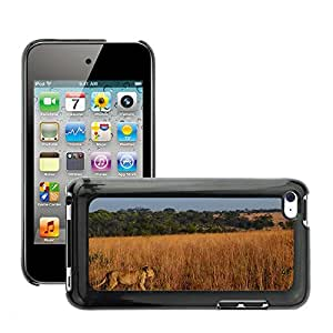 Etui Housse Coque de Protection Cover Rigide pour // M00116946 Animal del león de Africa Wildlife // Apple ipod Touch 4 4G 4th