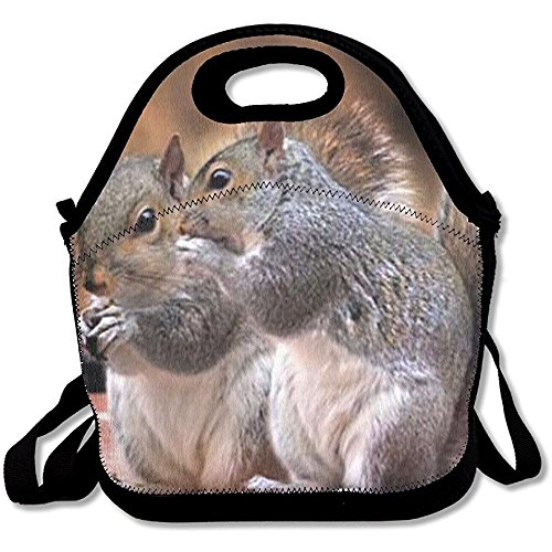Starogs Reusable Lunch Bag Squirrel Friends Food Handbag Custom Lunch Holder Printed Lunch Tote Bag Multi-function Lunch Box Organizer For Adults And Kids