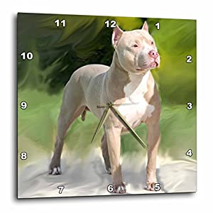 3dRose DPP_4241_3 American Pit Bull Terrier-Wall Clock, 15 by 15-Inch 25
