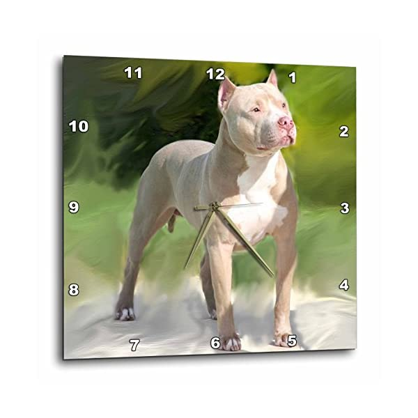 3dRose DPP_4241_3 American Pit Bull Terrier-Wall Clock, 15 by 15-Inch 1
