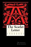 download ebook the scarlet letter (annotated) by nathaniel hawthorne (2014-08-24) pdf epub
