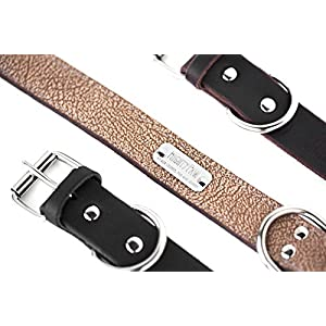 Mighty Paw Leather Dog Collar, Super Soft Distressed Leather- Premium Quality, Modern Stylish Look