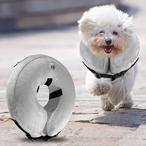 Airsspu Dog Cone Collar Soft - Soft Pet Recovery E-Collar Cone for Small Medium Large Dogs, Designed to Prevent Pets from Touching Stitches (Small) by Airsspu