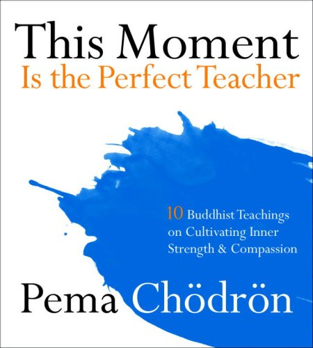 Download This Moment Is the Perfect Teacher: Ten Buddhist