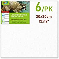 """Artoys (6 Pack) Pre-Stretched Blank Canvas Panel 30x30cm 280g Premium Cotton Duck 3/4"""" Thick"""