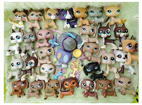 Emmas 1995 (lps Pets Random 5pcs & lps Accessories Random 8pcs) lps Short Hair Cat Collie Family Random Pets Suprise Gift Yellow (Lot Cat)