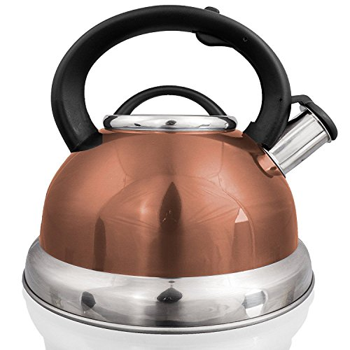 Stainless Steel Whistling Tea Kettle Pot 2.96 Quart 2.8 L. Coffee Tea Maker