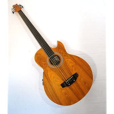 6-string-fretless-acoustic-electric