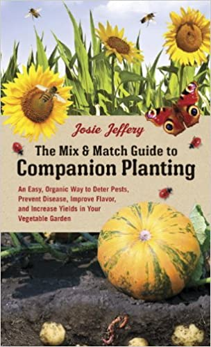 The Mix  Match Guide To Companion Planting An Easy Organic Way