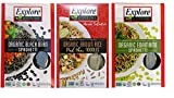 Explore Cuisine Organic Gluten Free Pasta 3 Flavor Variety Bundle: (1) Black Bean Spaghetti, (1) Edamame Spaghetti, and (1) Thai Brown Rice Pad Thai Noodles, 8 Ounces Each