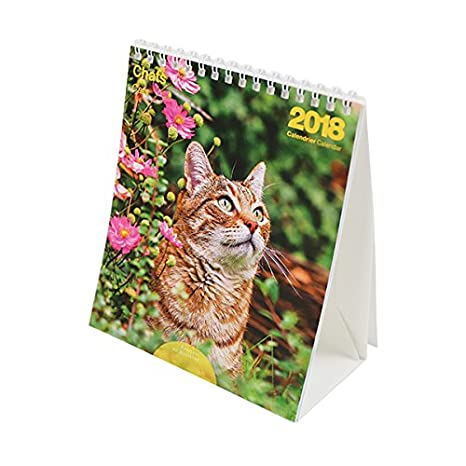 Editor 9972660032 Mini calendario gatos 2018