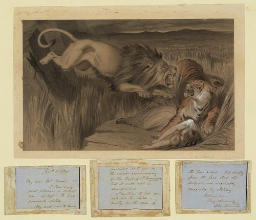 [Photo: British lion's vengence, Bengal tiger, attack, woman, baby, Sir John Tenniel, 1870 . Size:] (Animals That Start With The Letter T)