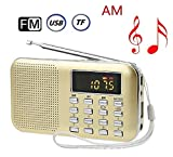 Ohala Mini Portable Am/Fm Radio Mp3 Music Player Speaker Support Micro Sd/tf Card (gold)