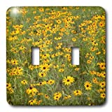3dRose LLC lsp_3133_2 Black Eyed Susan, Double Toggle Switch