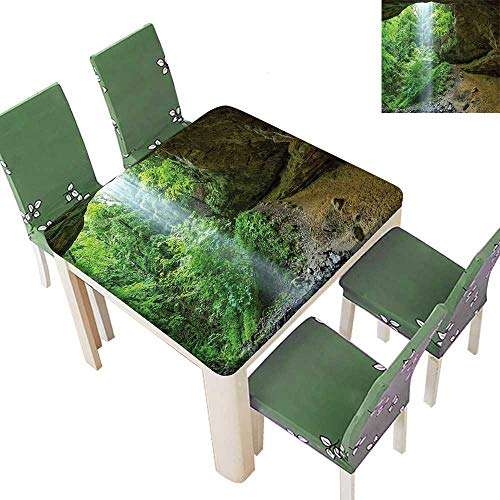 Printsonne Spring & Summer Outdoor Tablecloth, Michigan Cav Memorial Falls The Eco Foliage Picture Army Fern G Multicolor 50 x 50 Inch (Elastic Edge)]()
