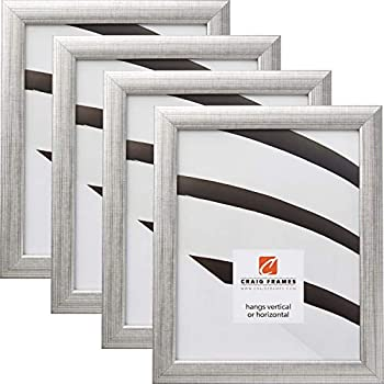 Craig Frames 23247944 8 x 12 Inch Picture Frame, Scratched Silver, Set of 4