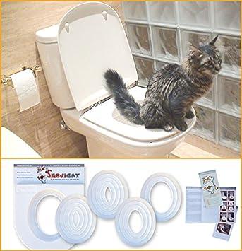 SERVICAT - Kit de Adiestramiento para gatos. Enseña a tu gato a usar el W.C. en 5 pequeños pasos.: Amazon.es: Jardín
