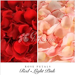 Fresh Rose Petals (Red/Pink) for Valentine's Day