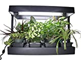 Growlight Complete Indoor Garden, Self Watering, Black