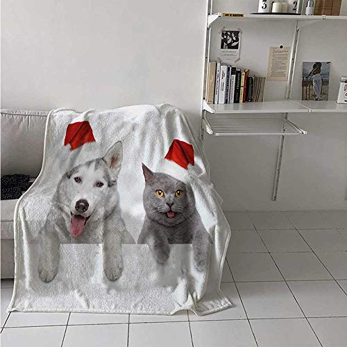 maisi Christmas Warm Microfiber All Season Blanket Cute Dog and Cat in Santa Red Hats Funny Puppy and Kitty Domestic Pet Animal Print Artwork Image 60x50 Inch White Grey Red (Pottery Barn Cat In The Hat Bedding)