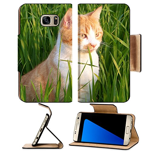Luxlady Premium Samsung Galaxy S7 EDGE Flip Pu Leather Wallet Case IMAGE ID: 34642489 white and orange male cat in the - City Mal Park