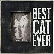 Primitives by Kathy Box Frame, Best Cat Ever, 10 by 10-Inch
