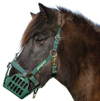 Nordic Medica Set + - Máscara para caballo
