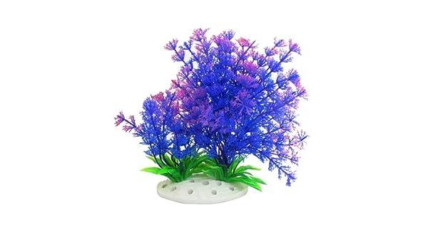 Amazon.com: eDealMax Plant Grass acuario Decor Artificial artificiales, 6,7 pulgadas, púrpura/Verde: Pet Supplies