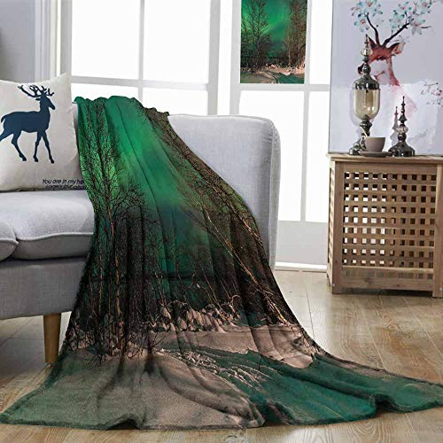 Zmstroy Super Soft Blankets Northern Lights Snowy Frozen Road Path Between Leafless Trees Finland Park Jade Green Brown White Lightweight E x tra Big W60 xL91 ()