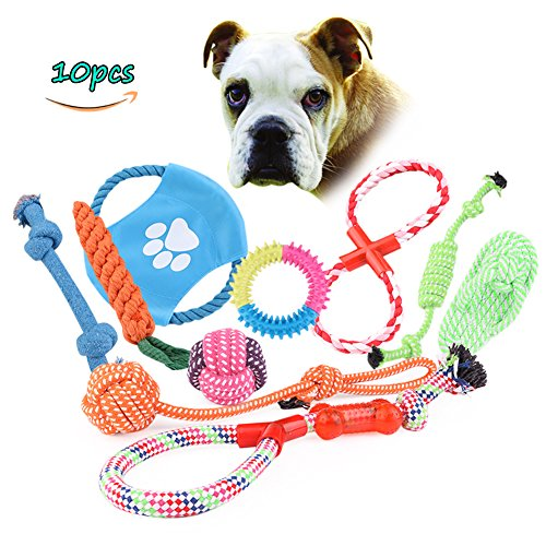 Pet Dog Toys, Chew toys , Cotton Braided Bone Rope Knotted Tied Durable Interactive Training Toys for Puppy Dog Random Colour(10 pcs) Cotton Knotted Bones
