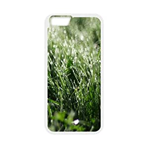 Okaycosama Funny IPhone 6 Cases Dewdrops Grass for Girls Protective, Iphone 6 Case 4.7, [White]