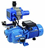 BurCam 503232S S.W. Cast Iron Jet Pump with Fluomac, 3/4 hp, 115V