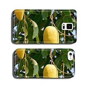 Mango fruits on a tree close-up cell phone cover case iPhone5
