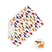 Waterproof Baby Diaper Changing Pocket Pad in Vibrant Color for Home and Travel (Dinosaur Print)