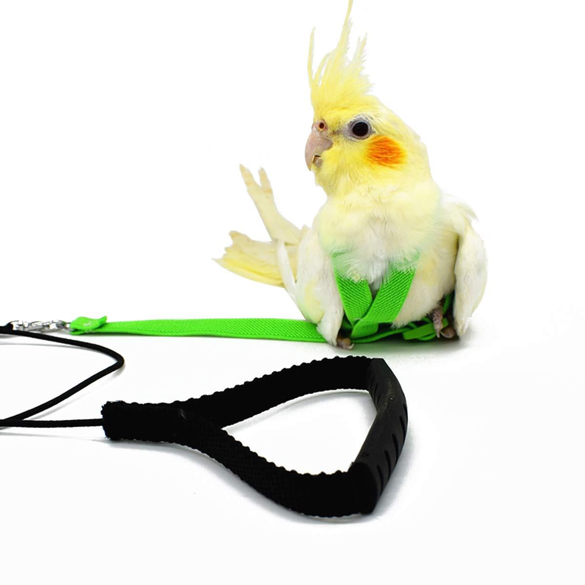 Adjustable Harness Leash for Parrot African Grey Cockatoo Macaw Ringneck Parakeet Cockatiel and Reptile Lizard Outdoor…