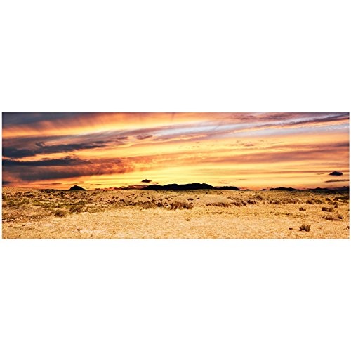 Habitat-Wraps-Desert-Sunset-Reusable-Glass-Tank-Background-295-L-X-11-H