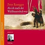 Als ich noch der Waldbauernbub war | Peter Rosegger