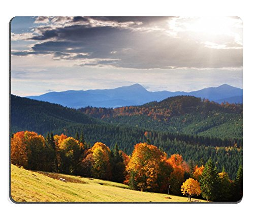 (MSD Natural Rubber Mousepad Majestic morning mountain landscape with colorful forest Autumn leaves Carpathian IMAGE 26513088 Stain Resistance Kit Kitchen Table Top Desk Coll)