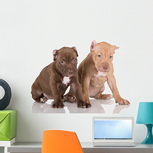 (Wallmonkeys Two American Pit Bull Terrier Puppies with Cropped Ears Wall Decal Peel and Stick Graphic WM309967 (24 in W x 16 in H))