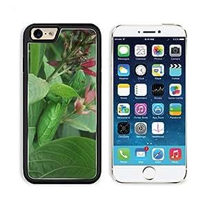 Costa Rica Iguana Hidden Leaves 3DCom iPhone 6 Cover Premium Aluminium Design TPU Case Open Ports Customized Made to Order wangjiang maoyi
